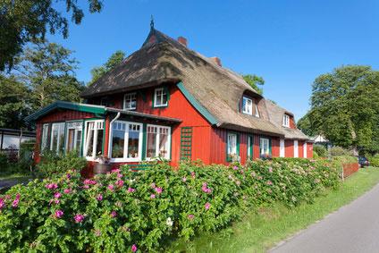 Urlaub mit Hund Ostsee Ferienhaus Rügen