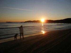Urlaub mit Hund Ostsee Insel Rügen Sonnenaufgang