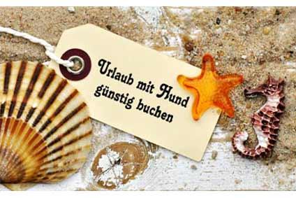 Urlaub mit Hund Ostsee günstig - Ferienhäuser & Ferienwohnungen