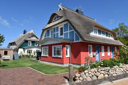 Urlaub mit Hund Ostsee Ferienhaus Fischland-Darß-Zingst